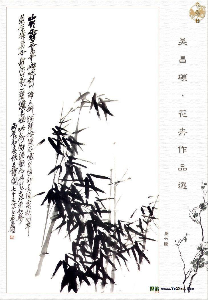 梅花绘画铅笔画的展示